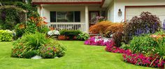 Learn how to avoid common mistakes when planting grass seed for a more full, lush, vibrant lawn. Lawn And Garden, Home And Garden, Garden Tips, Garden Bed, Balcony Garden, Garden Leave, Sun Garden, Porch Garden, Garden Edging