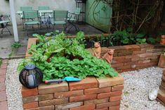 Rosen und Katzen Forum - Allgemeine Gartengestaltung - Mein Hochbeet-Gemüsegarten Brick Garden, Herb Garden, Yard, Patio, Outdoor Decor, Flowers, Plants, Outdoors, Gardening