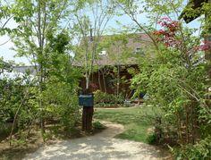 雑木の庭 - Google 検索