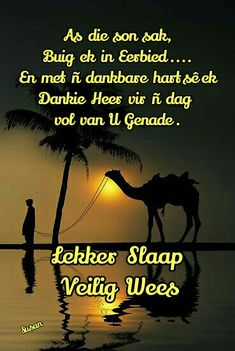 Evening Quotes, Good Night Blessings, Afrikaanse Quotes, Goeie Nag, Good Night Quotes, Special Quotes, Sleep Tight, Good Morning, Poems
