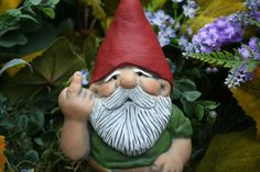 This seems to go against the laws of nature :/ Rude Garden Gnome Flipping The Bird