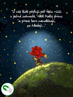 Magnetka - Malý princ - motivační The Little Prince, Film Books, Love Is All, Dreamworks, Motto, Positive Vibes, Quotations, Positivity, Merlin