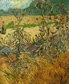 Thistles Vincent van Gogh - 1888
