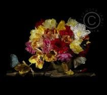 flower tulips bunched teracotta teracota vase bottle still life vanitas underwater photography studio shoot kitchen scene