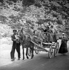 """Greece may 1959 peasant family originally labeled """"to delphi"""", set includes photographs of war-damaged buildings in athens, also rural landscapes and local villagers. from nick and maggie's spring 1959 trip to europe. part of an archival project, featuring the photographs of nick dewolf Horse Drawn, Great Photographers, Ancient Greece, Athens, The Past, Europe, Explore, Black And White, Photo And Video"""