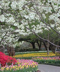 Dallas Arboretum, Texas