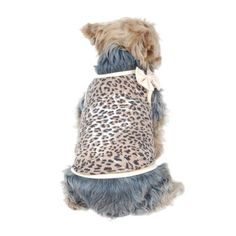 Wild and Fun Leopard Print Cotton Print Pet Shirt with Bow, Large (Holiday Christmas Gift for Pet)
