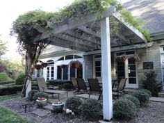 I wonder if my wee wisteria will ever get big enough to cover my pergola like this