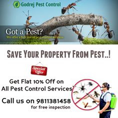 10% Off on all Pest Control Services in Noida, Delhi & NCR from GPC-Call on 9811381458 https://godrejpestcontrolc.wordpress.com/2017/01/07/say-no-to-unwanted-intruders-get-best-pest-control-services-from-godrej-pest-control-9811381458/  #pestcontrol #termitetreatment #noida #delhi #faridabad #ghaziabad #gurgaon