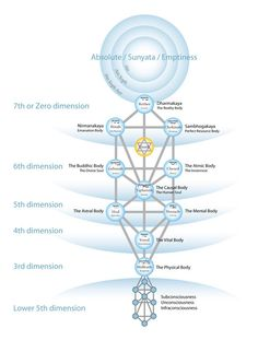 What is consciousness | Gnostic Teachings (image: Kabbalah, the Tree of Life)