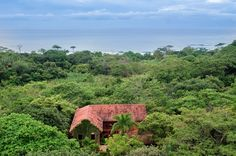Settled in a remote, privately owned jungle on Costa Rica's Nicoya Peninsula, this exclusive real estate owned by the renowned Oscar-winning actor-director Mel Gibson is on the market with a $29.75 million price tag. And @expensivehomes has some exclusive details to share with you. CHECK IT OUT! ➤ To see more news about The Most Expensive Homes around the world visit us at www.themostexpensivehomes.com #mostexpensive #mostexpensivehomes #themostexpensivehomes #celebrityhomes