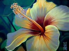 Acrylic Paintings of Hibiscus