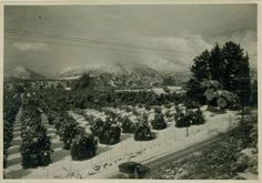 Yes, it can snow in Claremont, CA - circa 1940