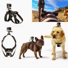 Hound Dog Fetch Harness Chest Strap Belt Mount for GoPro Hero 4 3 3 2 Camera UK for sale online Gopro Hero 4 Black, Gopro Hero 1, Cool Dog Harness, Pugs, Pet Camera, Gopro Hd, Sports Camera, Hound Dog, Dog Walking