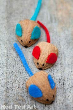Walnut mice