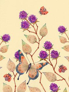 Blackberries, Butterflies  Ladybirds, Colleen Parker