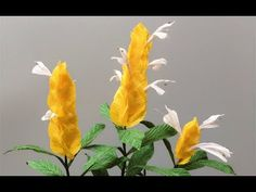 ABC TV | How To Make Bird Of Paradise Paper Flower From Crepe Paper - Craft Tutorial - YouTube