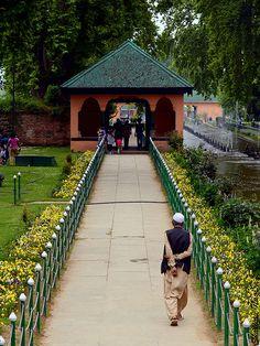 Shalimar Garden, Kashmir