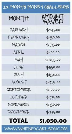 12 month challenge, rather than saving this money I am going to put it toward my…