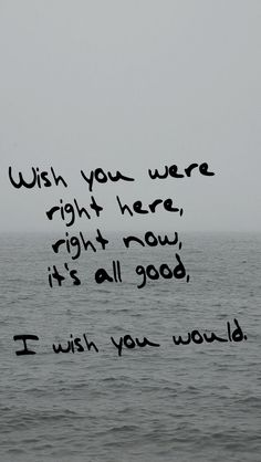 """I wish you were right here, right now, it's all good, I wish you would."" -Taylor Swift (1989: I Wish You Would)"