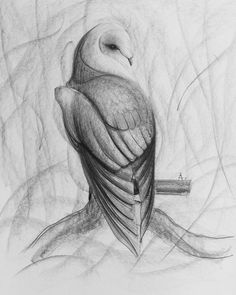 Monochrome graphite HB and 8B. 17.04.17 #Owl #draw #sketch #beautiful #sketching #drawing #pencil #draft #искусство #bw #graphic #instagood #ставрополь #рисунок #artlovers #sketches #top #arts_help #galleryart #pencildrawing #beauty #blackandwhite #igers #графика #artwork #pencilart #instaart #artist #sketchbook #art