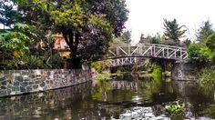Puente, rio, xochimilco, bridge, river, free, gratis