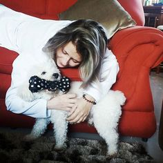 Foto com cachorro poodle branco em um sofá vermelho
