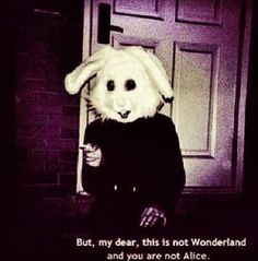 scary death Black and White movie creepy horror black night Alice In Wonderland alice wonderland nightmare bunny evil twisted White Rabbit Quotes Literature, Tiers Monde, Grunge Quotes, Visual Statements, Quote Aesthetic, The Villain, Soft Grunge, Hipster Grunge, Macabre