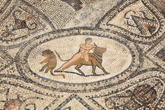 In Volubilis gibt es zahlreiche gut erhaltene Mosaike aus der römischen Antike zu bestaunen.