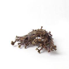 RevekkaMoustaki-Zei  ''Topologies'' Brooch Electroformed copper, carbon fibre