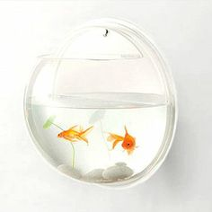 Wall deco goldfish tank $19.99