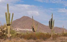Best Things to do in Phoenix - U.S. News