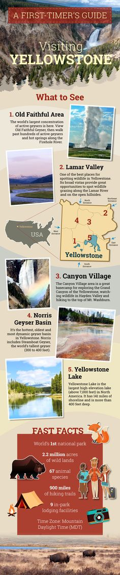 A first-timer's guide to Visiting Yellowstone. This is a good guide.