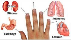 There is a fascinating alternative medicine method that is very popular among the Japanese and is based on the idea that every finger of one's hand Nail Growth, Today Tips, Trouble, Fungal Infection, Strong Nails, Healthy Nails, Iphone Wallpaper Glitter, Self Healing, Chakra Healing