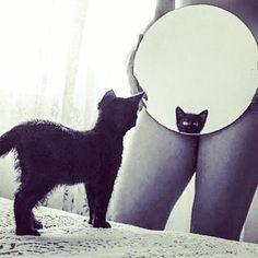 #selfshots #selfies