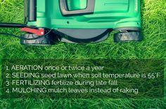 Fall Lawn Care 1. Aeration 2. Seeding 3. Fertilizing 4. Mulching