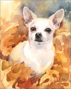Watercolors by Maria Stezhko (Акварели Марии Стежко): Embracing the Fall Colors Chihuahua Drawing, Chihuahua Art, Animal Paintings, Animal Drawings, Art Drawings, Watercolor Animals, Watercolor Art, Dibujos Cute, Claude Monet