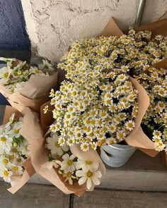 Bouquet of daisies #daises #flowers