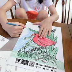 "funplay_m.O.m on Instagram: "": 지렁이를 먹는 새 색칠한대로 표현되어 움직이는 것이 신기해요. 새를 손 위에 올려 보기도 하고 가까이 보기도 해요. #증강현실 #가상현실 #quiver"" Quiver, Beach Mat, Outdoor Blanket, Community, Communion"