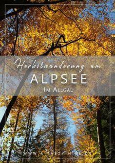 Wandern im Allgäu - Gemütliche Herbstwanderung im Allgäu rund um den Allgäuer Alpsee. Ideal auch für Wanderanfänger! #Wandern #Wanderung #WandernimAllgäu #Allgäu