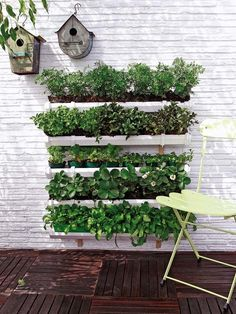 Vertical Gardens 21 Simply Beautitful DIY Vertical Garden Projects That Will Transform Your Design - 21 simply beautiful diy vertical garden diy projects have been showcased underneath to help you in this endeavors. Vertical Vegetable Gardens, Gutter Garden, Diy Herb Garden, Vertical Garden Diy, Garden Planters, Vegetable Gardening, Garden Kids, Garden Oasis, Vertical Planting