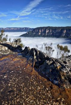 With such a small group size, Blue Mountains Eco tours are totally unique in Sydney . Our 4wd vehicles & knowledge get you to the most beautiful areas.Visit: http://www.bluemountainsecotours.com/why-choose-us/