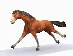 cavalo de animação