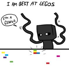 enderbro | enderbro legos are applicable to real life
