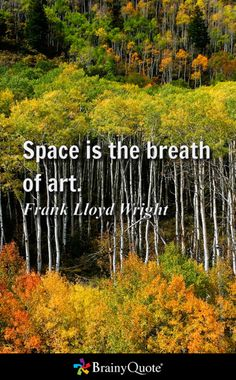 Space is the breath of art. - Frank Lloyd Wright