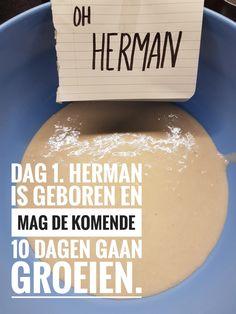 Oh Herman, vriendschapsbrood – Ingridzijkookt Tooth Cake, Cooking Bread, Good Food, Yummy Food, How To Make Bread, Bread Making, Piece Of Cakes, Vegan Sweets, High Tea