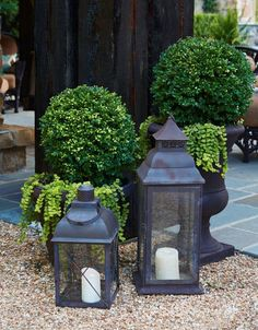 Boxwood orbs in sculptural urns ground the garden in classicism. - Photo: Jean Allsopp / Design: Donaldson Landscape & Design