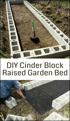 Cinder blocks make great frames for a raised garden bed as they're more durable than untreated timbers and it may not be safe to use treated timber anyway!