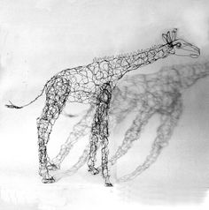 Giraffe-Wire Drawing Sculpture.