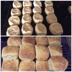 First batch of scones in over two years August 2015